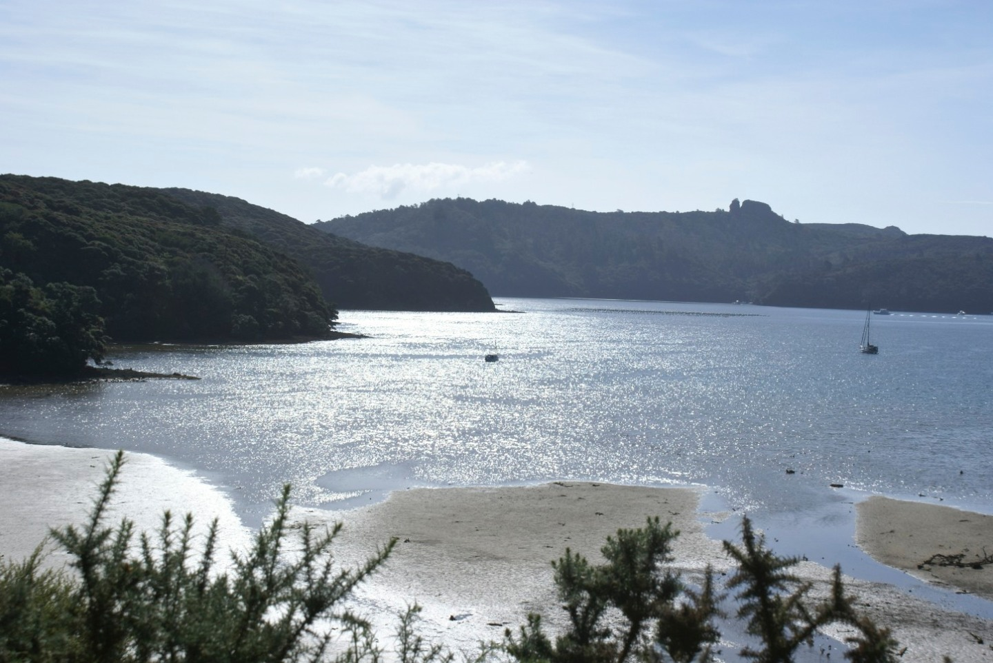 Kaiaraara Bay Great Barrier Island