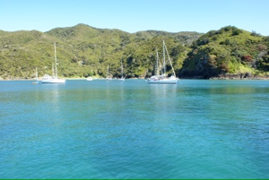 OkeBay, Bay of Islands, New Zealand