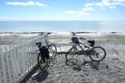 End of the road - Hawkes Bay trails