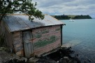 An old Boatshed - Rangitoto Island