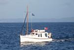 Agnes cruising the Northland Coast