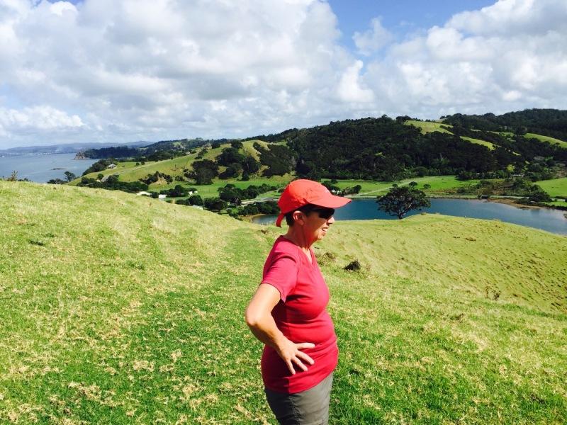 Tawharanui Regional Park Auckland New  Zealand