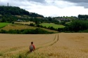 Ruth heads across the grain field towards North Nibley