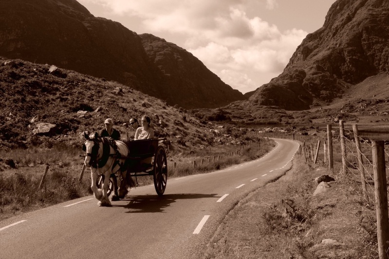 One of the many horse and traps we encountered on the Gap of Dunloe walk. Sorry about the sepia, could not help myself.