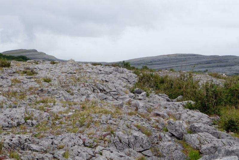 The limestone landscape of The Burren