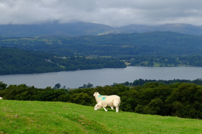 Lake Windermere between rain bands