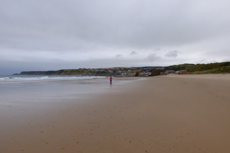 Cullen Bay with Cullen town in the background, beautiful beach, shame about the weather