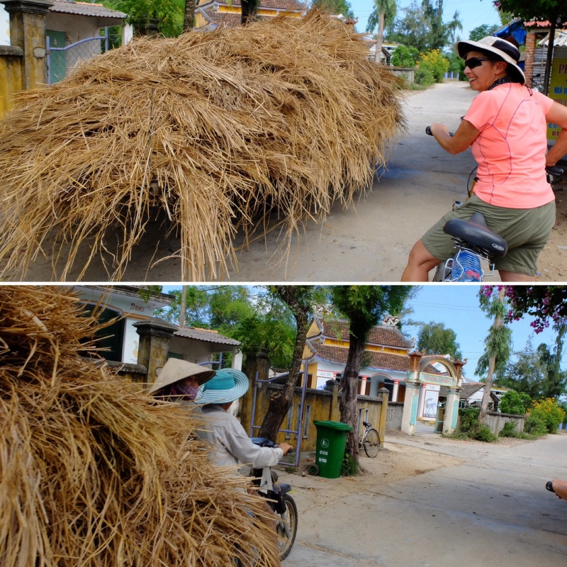 We had to make way for this mobile haystack, there was a bike with two people attached to the hay.