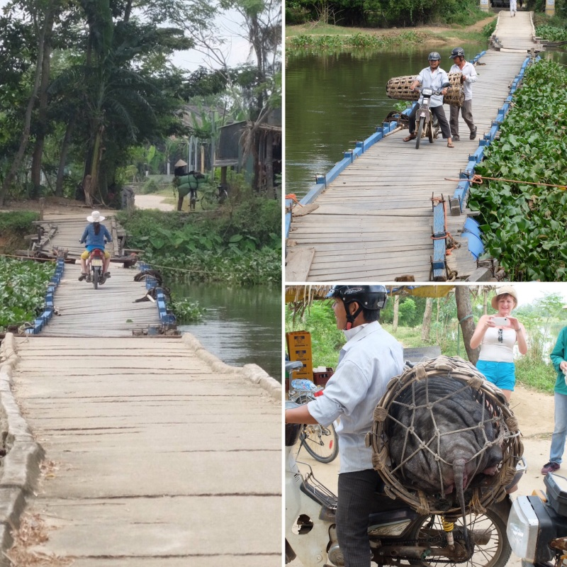 We had to traverse some interesting bridges, this was a floating bridge. Shortly after we crossed, the bike with the basket on the back followed us across, it took a steadying hand from behind to help the driver get the bike off the bridge. His cargo was a live pig in the basket.