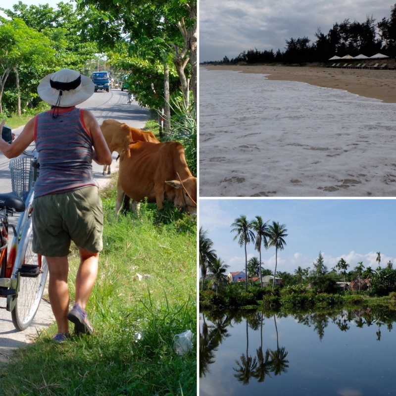 Our warm up cycle took us out to An Bang beach, a pretty ride out and we found a road less travelled coming back which took us through water coconut plantations.