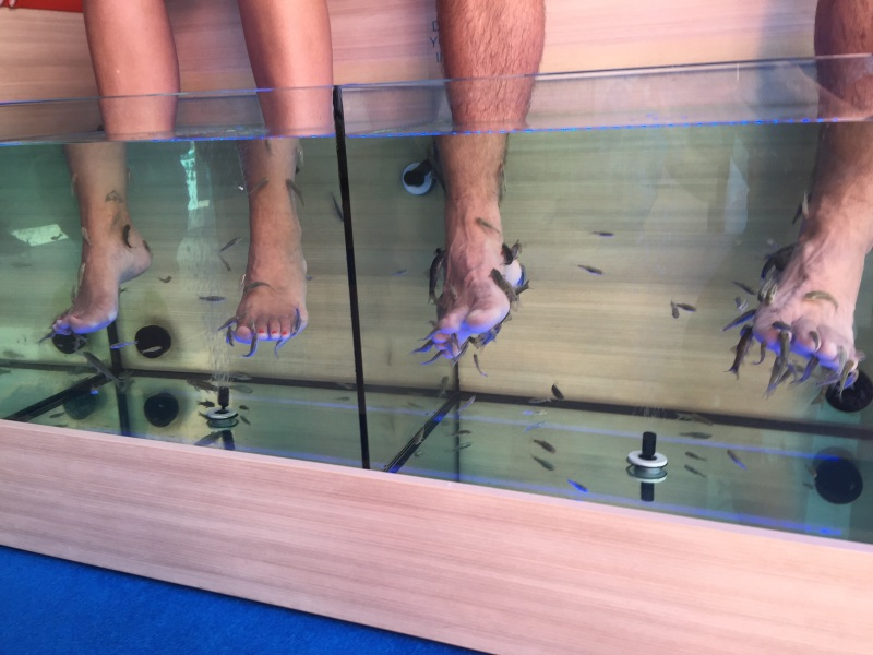 Not a tourist attraction but Ruth could not help but take a picture of people getting fish treatment - you put your legs in the tank and they nibble away all that dead skin. Saw them all through the Greek islands.