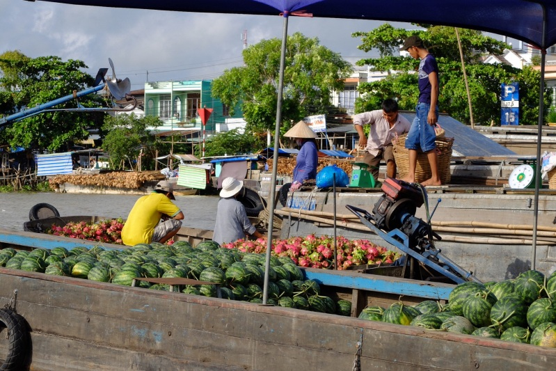 The floating market at Cai Rang is a wholsale market where local farmers bring their produce and local retailed come and purchase it.In this picture there are boat loads of melons and dragon fruit.