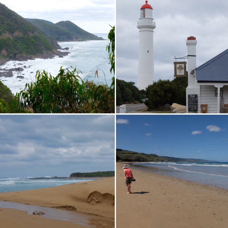 The coastline dominated the trip from Torquay to Apollo Bay, after that it becomesmore of a contrast of landscapes with the highlight being the area between Apollo Bay and The Bay of Islands