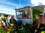 Bay of Islands: Much harder to restore
