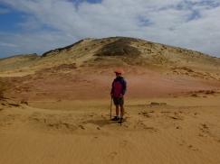 Te Paki track near Cape Rienga
