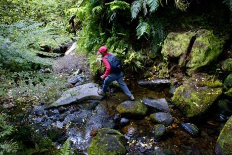 Mt Taranaki wandering