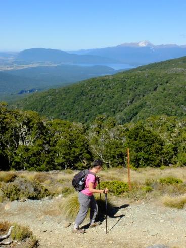 Kepler track Fiordland