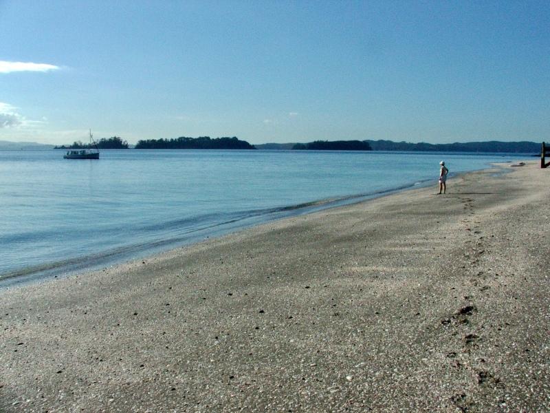Motouora Island - May 06