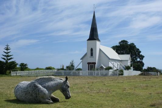 A photogenic horse East Coast, NZ