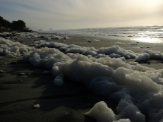 Sea froth, Granity, NZ