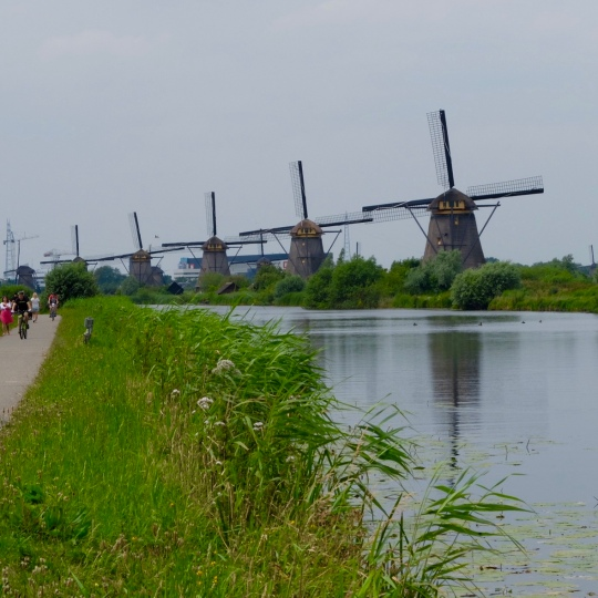 Amsterdam to Bruges 2015: This was one of our few rides with a group of other people. Our accommodation was a barge. Ruth loved it, it was flat and easy cycling