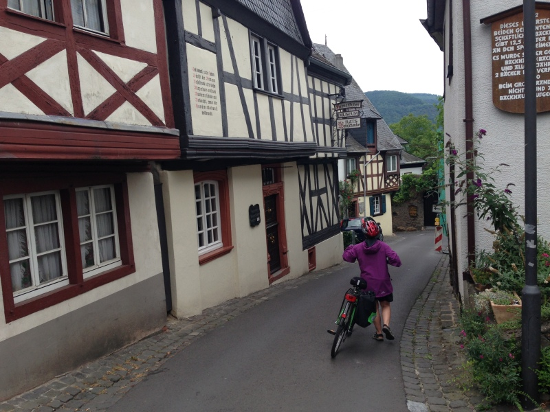 Cycling the Moselle