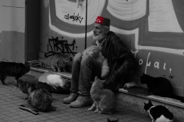 The Cat Man near our lodgings in Istanbul