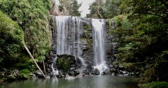 Te Wairere Waterfall