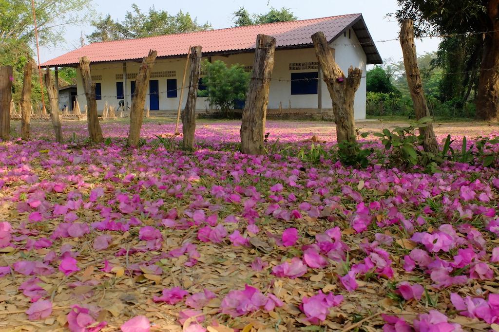 Laos – Village life