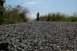 Hauraki Rail Trail on the folders